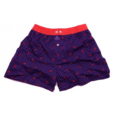 Mc ALSON Boxer short boy blue with red skier